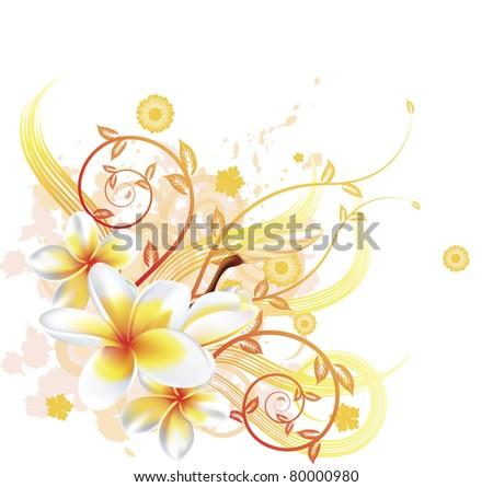 A very stylish floral background illustration with Plumeria Frangipani flowers. - stock photo