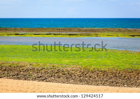 A view from the Atlantic ocean during the low tide - stock photo