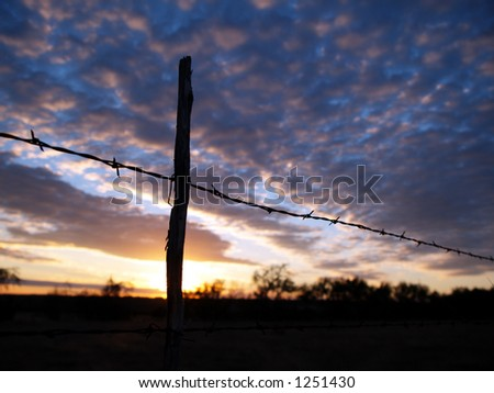 A view of a barbed wire fence during a Texas Sunset. - stock photo