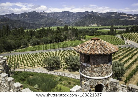 A view of a Napa Valley vineyard from a castle - stock photo