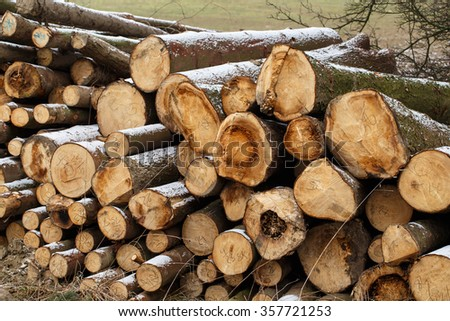 A view of huge stacks of logs piled high at a lumber factory - stock photo