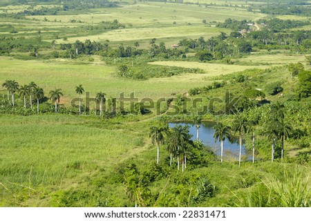 A view of rural tropical landscape with vegetation on cuban countryside - stock photo
