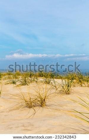 A view of the Atlantic Ocean in Delaware. - stock photo