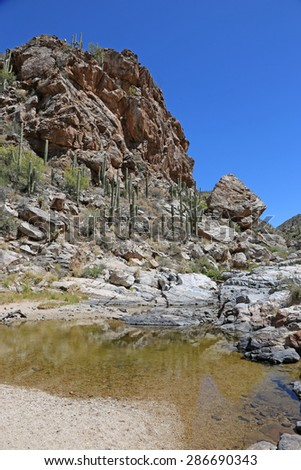 A view of the canyon trail to Tanque Verde Falls, located just outside Tuscon, Arizona, USA.  - stock photo