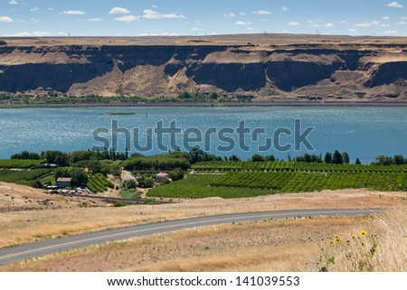 A view of the Columbia River with a green vineyard and road on the Washington side and a highway and steep embankment on the Oregon side. - stock photo
