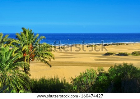 a view of the Natural Reserve of Dunes of Maspalomas, in Gran Canaria, Canary Islands, Spain - stock photo