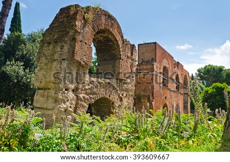A view on the ruins of the Aqua Claudia Aquaduct on Palatine hill during summertime in Rome, Italy - stock photo