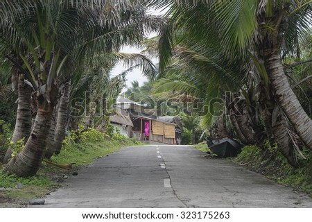 A village with concrete road at Batanes island, Phillipines. - stock photo