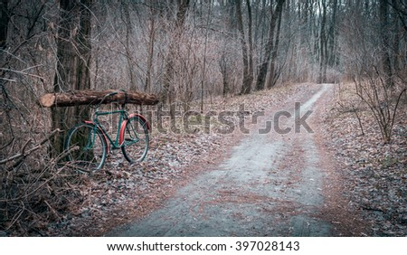 A walk in the woods in early spring. Extraction of fire wood in the woods - stock photo