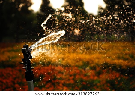 A watering cart in dusk. - stock photo