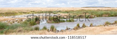 A watering hole in the parched savanna. Serengeti National Park, Tanzania. - stock photo