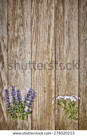 a weathered wood table with flowers - stock photo