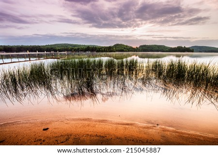 A wide angle shot of reeds by the shoreline of a beach on a tranquil lake with a dock in the background at sunrise.  - stock photo