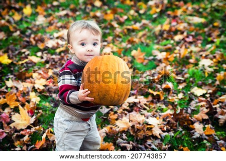 A wide eyed toddler holding a big pumpkin outside in the Fall.  - stock photo
