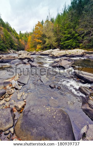 A wild river in swallow falls Maryland during Autumn - stock photo