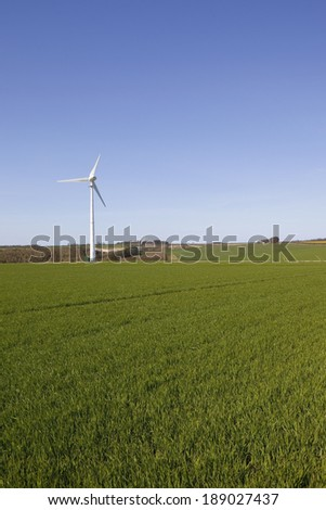 a wind turbine standing in wheat fields in the yorkshire wolds england under a blue sky in springtime - stock photo