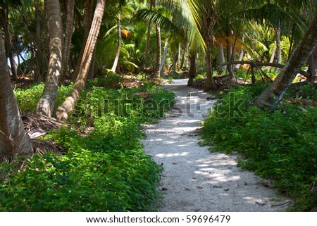 A winding sandy path on Lighthouse Caye, Belize.  As close to a deserted island as can be. - stock photo