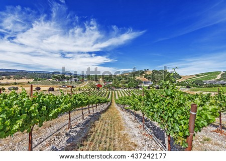 A wining community, vineyards and wineries on the scenic hills of the California Central Coast where vineyards grow a variety of fine grapes for wine production, near Paso Robles, CA. on Highway 46.  - stock photo