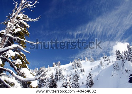 A winter mountain view during snowshoeing near BC, Canada. - stock photo