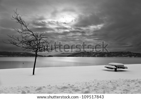 A winter scene of a bench and a bare tree in snow with a lake, cloudy sky and distant mountains in the background done in black and white. - stock photo