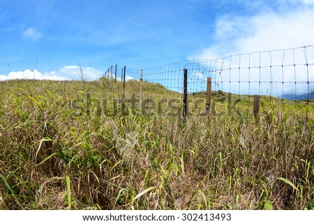A wire fence in a grassy field creates a boundary to prevent livestock from wandering away from a farm. - stock photo