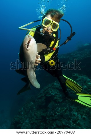 A woman diver is hypnotizing a nurse shark by stroking its belly. - stock photo