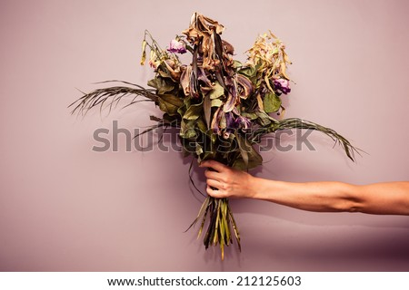 A woman's hand is holding a bouquet of dead flowers - stock photo