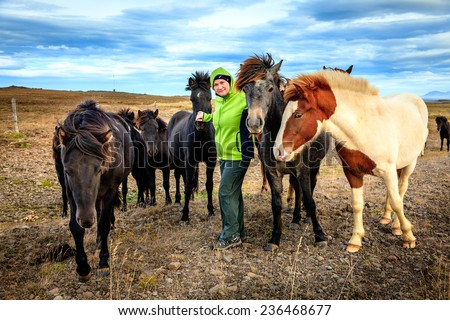 A woman tourist befriends a group of Icelandic Ponies in the Iceland countryside - stock photo