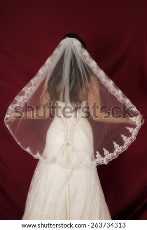 a woman with her back to the camera holding out her veil. - stock photo
