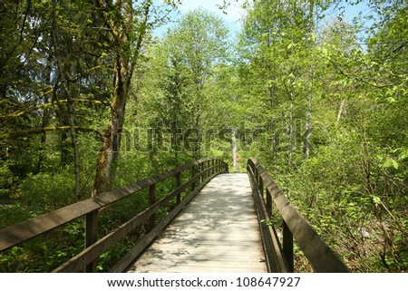a wood bridge in the park - stock photo