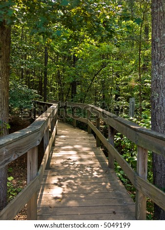 A wooden bridge leading into the forest - stock photo
