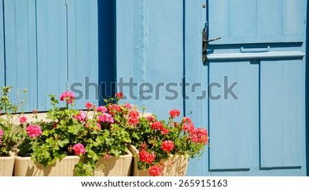 A wooden house door and geranium flowers in the boxes in sunny day. Brittany, France - stock photo