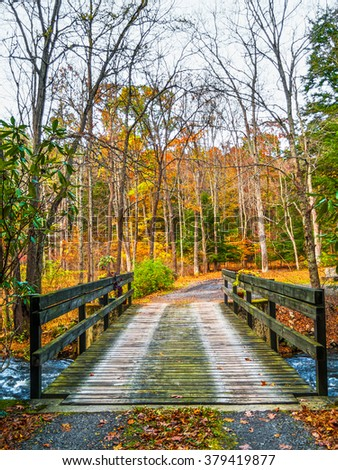 A wooden plank bridge over this creek in the Pocono Mountains of pennsylvania. - stock photo