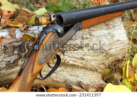 A wooden retro shotgun with shot in autumn style - stock photo