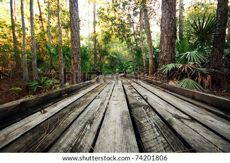 A Wooden Walkway in the Forest - stock photo