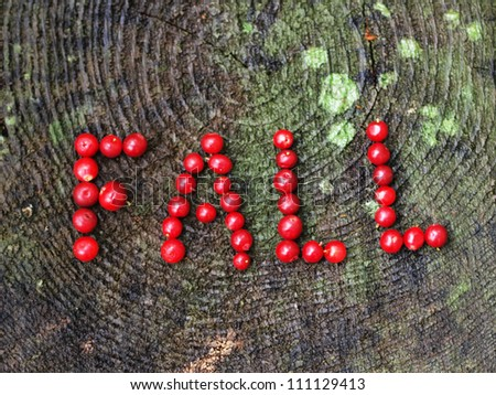 """A word """"fall"""" written with cranberries - stock photo"""