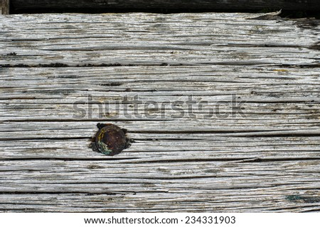 A worn weathered board for use as a texture - stock photo