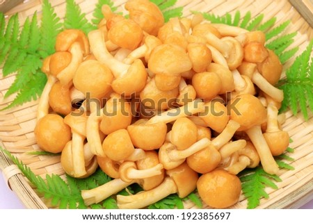 A woven basket containing foliage and mushrooms with long stems. - stock photo