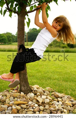 A young girl playing in a tree - stock photo