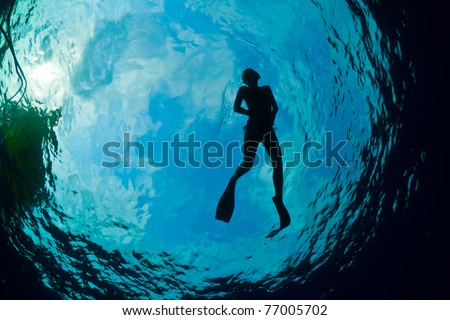 A young woman snorkeling in The Caribbean - stock photo