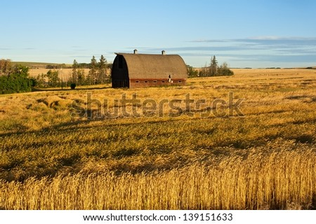 Abandoned barn in harvested field at sunrise - stock photo