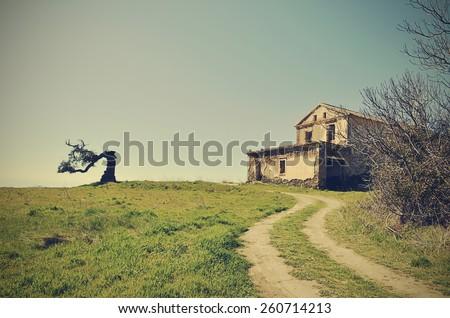 abandoned house and cork centenary - stock photo