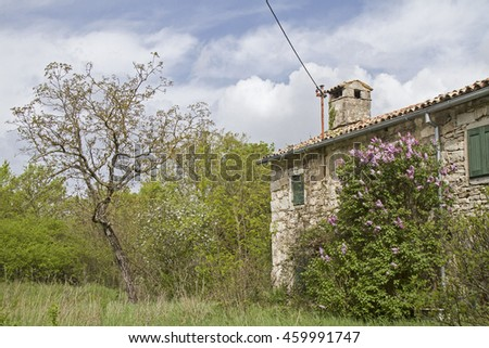 Abandoned, often only weekend used and partly dilapidated houses idyllic overgrown with plants characterize the idyllic landscape in Istria - stock photo
