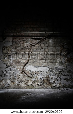 Abandoned reformatory creepy decaying wall background  - stock photo