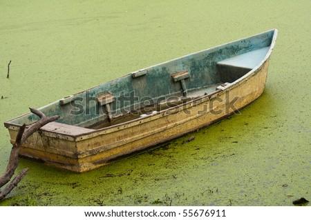abandoned rowing boat floating on algae in swamp land - stock photo
