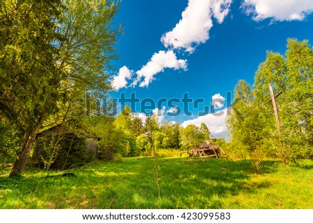 Abandoned village in the forest - stock photo