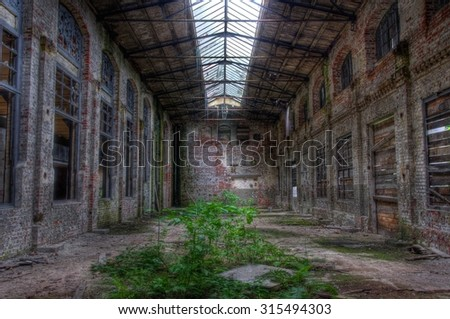 Abandoned warehouse with plants - stock photo
