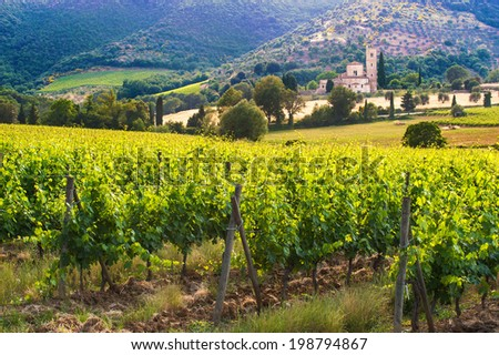 Abbey Sant'Antimo between the vineyards in Tuscany, Italy - stock photo