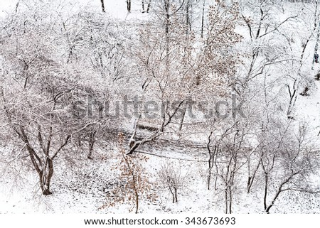 above view of footpath in snow urban garden in winter season - stock photo