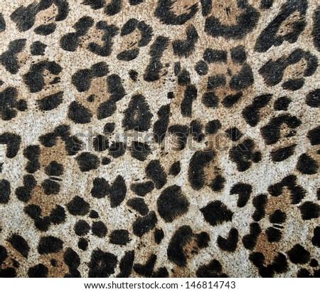 Abstract animal texture  - stock photo